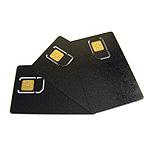 Silver card (PIC 16F877+24C64)